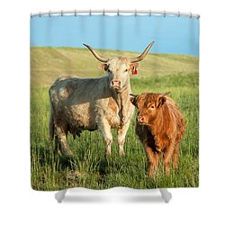 Big Horn, Little Horn Shower Curtain by Todd Klassy