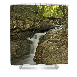 Big Pup Falls 4 Shower Curtain by Michael Peychich