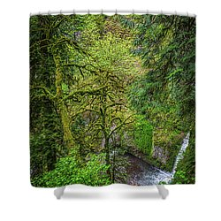 Bigfoot Country Shower Curtain by Jon Burch Photography