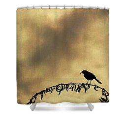 Bird On Branch Montage Shower Curtain by Dave Gordon