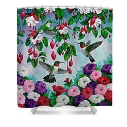 Bird Painting - Hummingbird Heaven Shower Curtain by Crista Forest