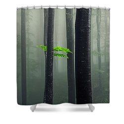 Bit Of Green Shower Curtain by Evgeni Dinev