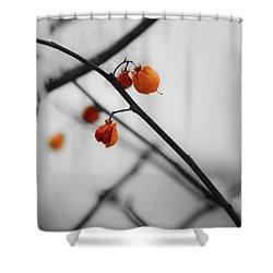 Bittersweet  Shower Curtain by Teresa Mucha