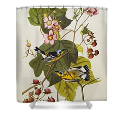 Black And Yellow Warbler Shower Curtain by John James Audubon