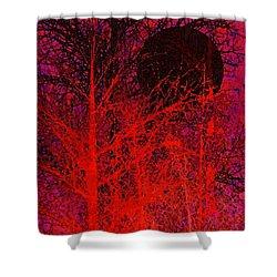 Black Moon Shower Curtain by Richard Rizzo