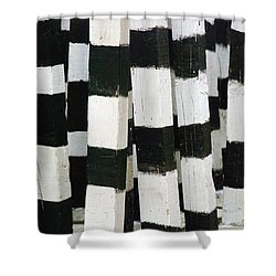 Blanco Y Negro Shower Curtain by Skip Hunt