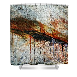 Blood From A Stone Shower Curtain by RC deWinter