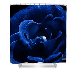 Blue Blue Rose Shower Curtain by Clayton Bruster
