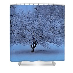 Blue Christmas Shower Curtain by Betty Northcutt