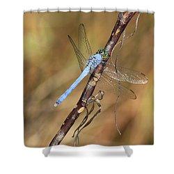 Blue Dragonfly Portrait Shower Curtain by Carol Groenen