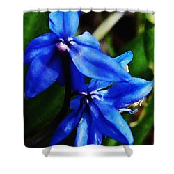 Blue Floral Shower Curtain by David Lane