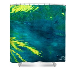 Blue Pool Off Ulaino Road Shower Curtain by Fay Biegun - Printscapes
