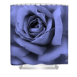 Blue Rose Abstract Shower Curtain by Carol Groenen