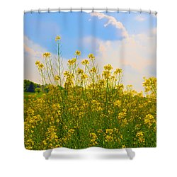 Blue Sky Yellow Flowers Shower Curtain by Bill Cannon