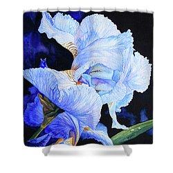 Blue Summer Iris Shower Curtain by Hanne Lore Koehler