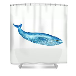 Blue Whale Shower Curtain by Michael Vigliotti
