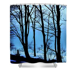 Blue Woods Shower Curtain by Karol Livote