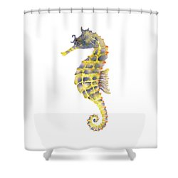 Blue Yellow Seahorse - Square Shower Curtain by Amy Kirkpatrick
