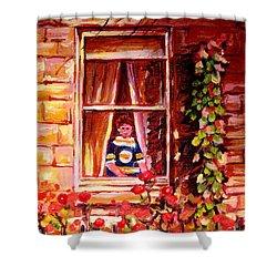 Boston Bruin Fan Shower Curtain by Carole Spandau
