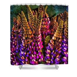 Bouquet Of Lupin Shower Curtain by David Patterson