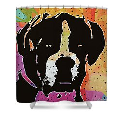 Boxer Shower Curtain by Nancy Aurand-Humpf