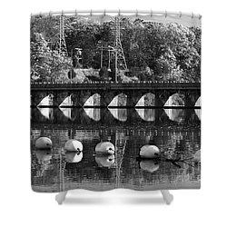 Bridge Reflection Shower Curtain by Karol Livote
