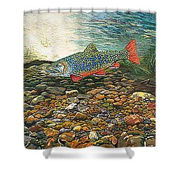 Brook Trout Art Fish Art Nature Wildlife Underwater Shower Curtain by Baslee Troutman