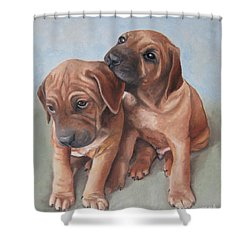 Brothers Shower Curtain by Jindra Noewi