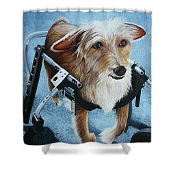 Buddy's Hope Shower Curtain by Vic Ritchey