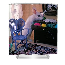 Bunny In Small Room Shower Curtain by Garry Gay
