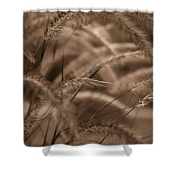Burgundy Giant Shower Curtain by DigiArt Diaries by Vicky B Fuller
