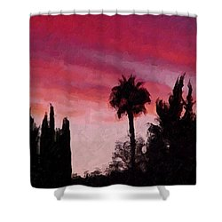 California Sunset Painting 1 Shower Curtain by Teresa Mucha
