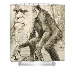 Caricature Of Charles Darwin Shower Curtain by English School