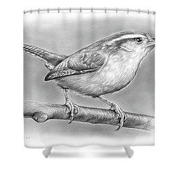 Carolina Wren Shower Curtain by Greg Joens