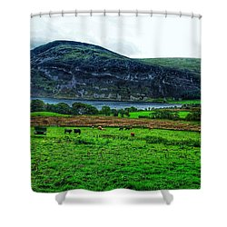 Cattle Grazing At Buttermere Shower Curtain by Joan-Violet Stretch