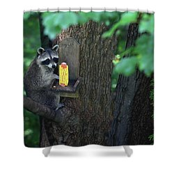Caught In The Act Shower Curtain by Karol Livote