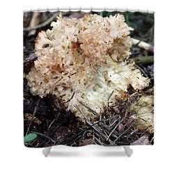 Cauliflower Fungus Shower Curtain by Michal Boubin