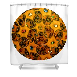 Cell Network Shower Curtain by Nancy Mueller