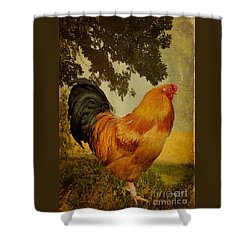 Chanticleer Shower Curtain by Lois Bryan