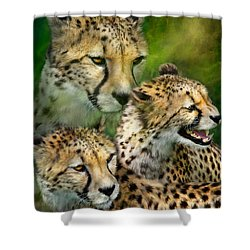 Cheetah Moods Shower Curtain by Carol Cavalaris