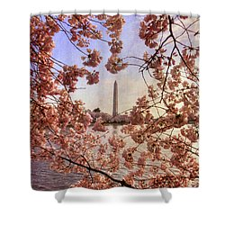 Cherry Blossoms And The Washington Monument Shower Curtain by Lois Bryan
