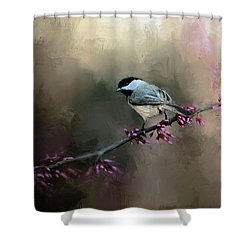 Chickadee In The Light Shower Curtain by Jai Johnson