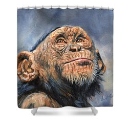 Chimp Shower Curtain by David Stribbling