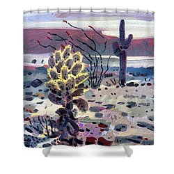 Cholla Saguargo And Ocotillo Shower Curtain by Donald Maier