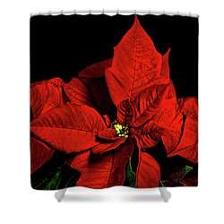 Christmas Fire Shower Curtain by Christopher Holmes