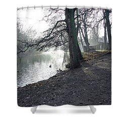 Churchyard Trees Shower Curtain by Rod Johnson