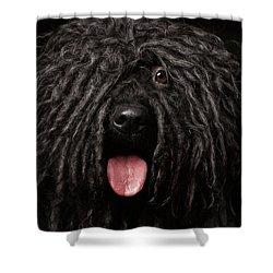 Close Up Portrait Of Puli Dog Isolated On Black Shower Curtain by Sergey Taran