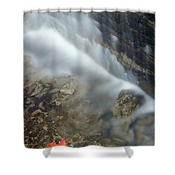 Closeup Maple Leaf And Decew Falls, St Shower Curtain by Darwin Wiggett