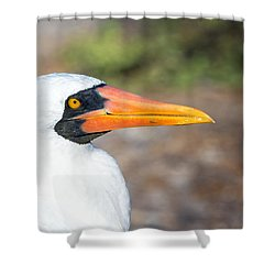 Closeup Of The Face Of A Nazca Booby Shower Curtain by Jess Kraft
