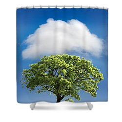 Cloud Cover Shower Curtain by Mal Bray